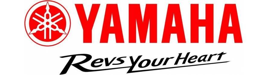 REVS 2019 Yamaha