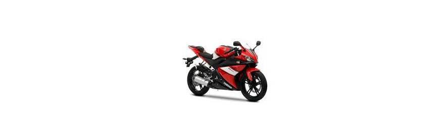 YZF-R 125 2009